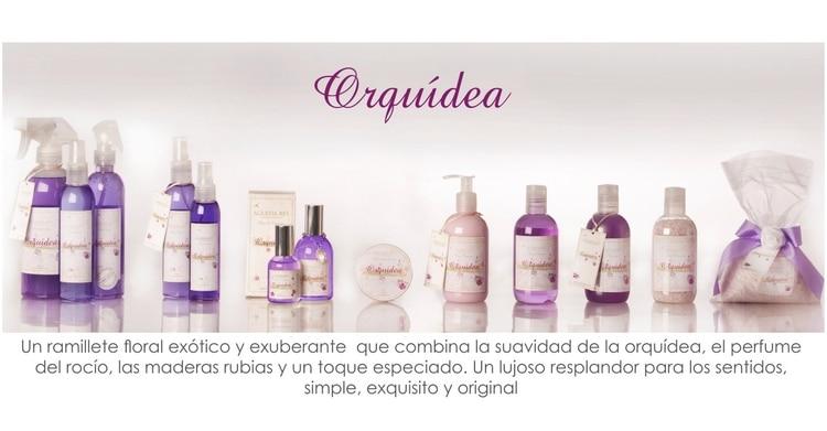 colecciones_orquidea